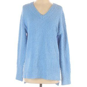 NWT Sanctuary Pullover Sweater Long Sleeve V-Neck